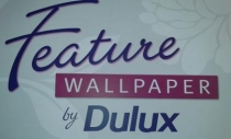 Dulux Feature Wall